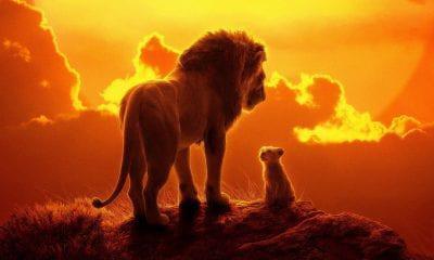 the lion king news   SEQUEL   The Lion King news, SEQUEL, The Lion King, ΣΙΝΕΜΑ